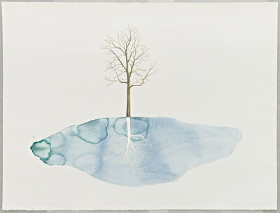 Blaise Drummond, 'Untitled (Silver Tree)', 2013