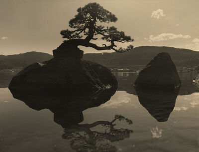 Yamamoto Masao, 'Bonsai #4036', 2019