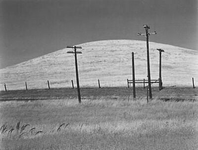 Edward Weston, 'Hill and Telephone Poles', 1937