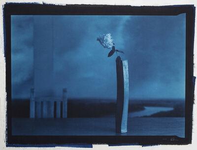 Kenro Izu, 'Still Life 933B', 2003