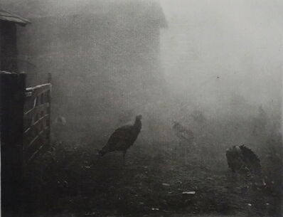 P. H. Emerson, 'A Corner of the Farm-Yard', 1895