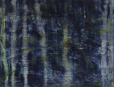 Matthias Meyer, 'Dark Water Painting 2 ', 2011