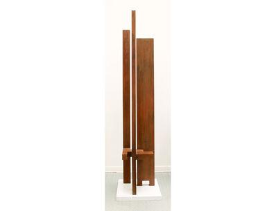 Marino di Teana, 'Tour Espace Masse', 1970-2013
