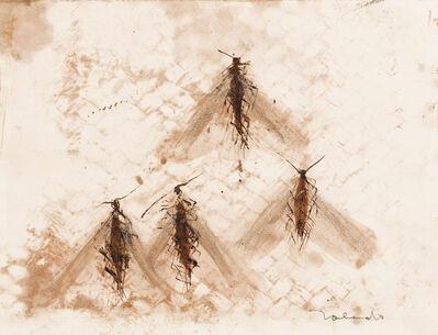 Francisco Toledo, 'Untitled'