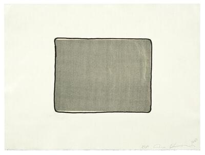 Ann Hamilton, 'script n', 2008