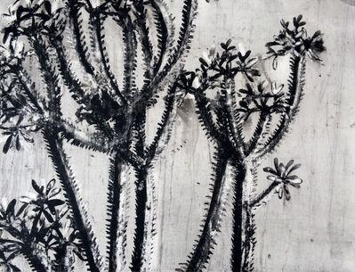 Heidi Jung, 'Crown of Thorns', 2017