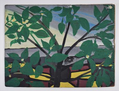 Frank Walter, 'Tropical Plant', 1926 -2006