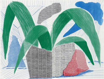David Hockney, 'Green Grey & Blue Plant, July 1986 ', 1986