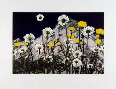 Karin Kneffel, 'Flowers', 2006
