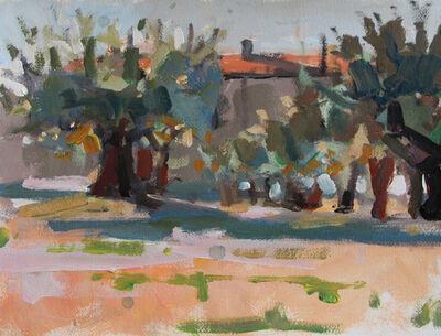 Robert Sweeney, 'Olive Orchard', 2019