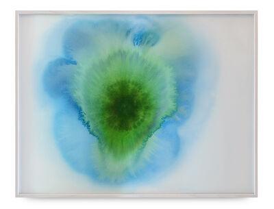 Thiago Rocha  Pitta, 'Portrait of a cyanobacteria', 2018