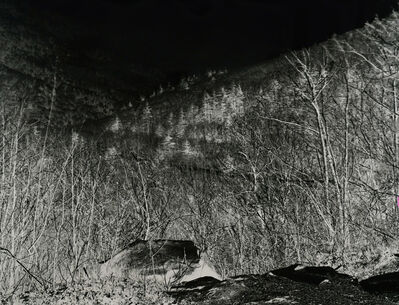 Shi Guorui, 'The Clove Catskill Mountains New York April 25 2019', 2019