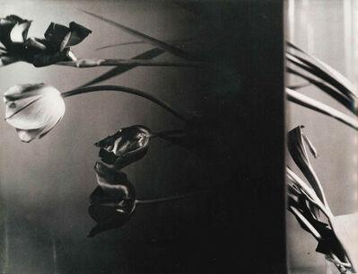 Florence Henri, 'Nature Morte (Still-Life Composition)', 1931