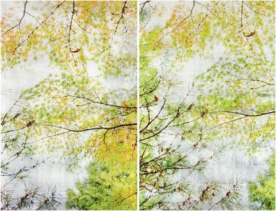 Susan Goldsmith, 'Autumn Sampling II (Diptych)', 2019