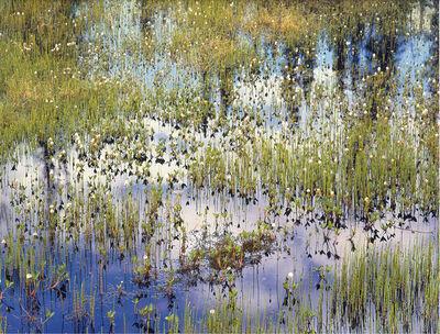 Christopher Burkett, 'Spring Pond and Reflections, Alaska', n.d.