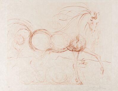 Salvador Dalí, 'L'Etalon Blanc (Hommage au cheval) (Field 74-9; M & L 639b)', 1973-1974