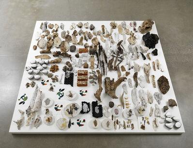 Gabriel Orozco, 'Desert Samples', 2010