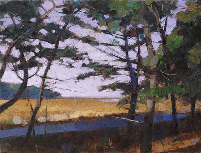 Larry Horowitz, 'Marsh Path'