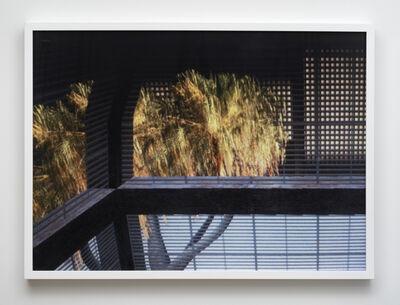Sara Ludy, 'Window #6', 2010-2015