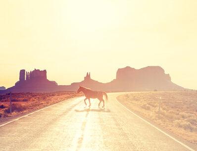 Nick Meek, 'Navajo Horse, Monument Valley', 2012