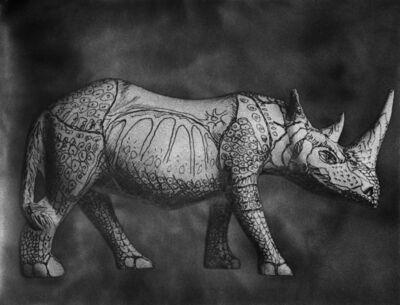 José Antonio Martínez, 'Rhinocerus', 2016