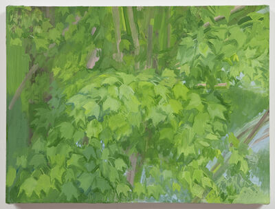 Sylvia Plimack Mangold, 'The Maple Tree (Summer)', 2011