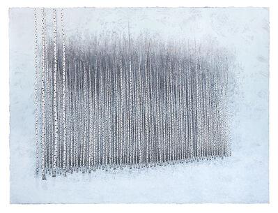 Stéphane Erouane Dumas, 'Forêt I', 2017