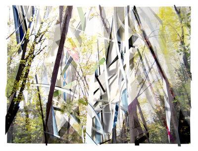 Sandy Litchfield, 'Scrap Paper and Woods 3', 2012