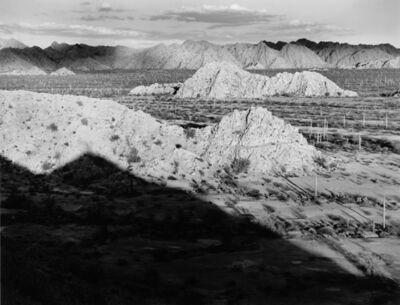Jody Forster, 'Saguaro Arroyo, Cabeza Prieta, Arizona', 1990