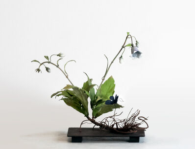 Carmen Almon, 'Wild Campanula with Small Navy Butterfly', 2019