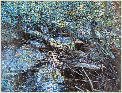 William Nichols, 'Swift Running Stream', 2005