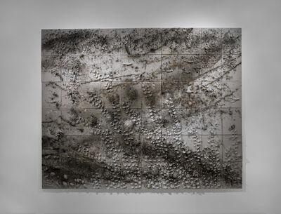 Cai Guoqiang 蔡国强, 'Fall', 2014