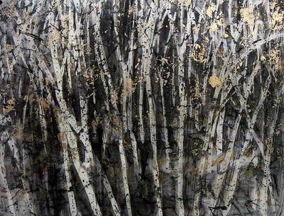 Audrey Frank Anastasi, 'Birch Abstract', 2010