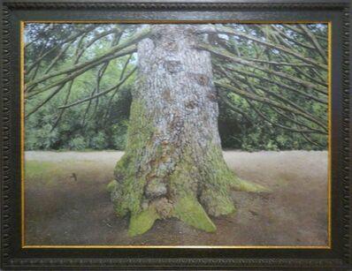 James Blake, 'Scottish Pine', 2008