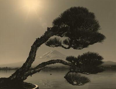 Yamamoto Masao, 'Bonsai #4024', 2019