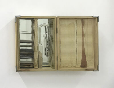 Sabrina Merayo Nuñez, 'Sample's box', 2019