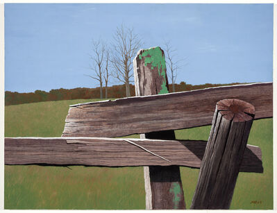 Rolland Golden, 'Edges at Atietum ', 2011