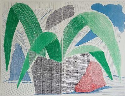 David Hockney, 'Green Grey & Blue Plant, July 1986 (signed)', 1986