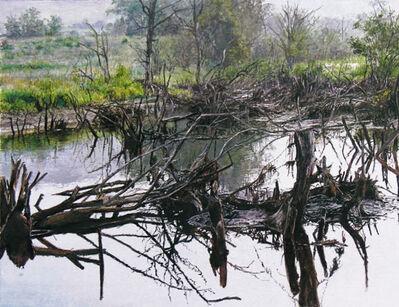 James Van Pattern, 'Charlotte Valley Swamp'