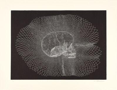 Walter Oltmann, 'Infant Skull', 2015