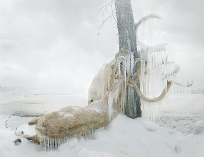 Simen Johan, 'Untitled #159', 2010