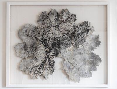 Dominique Lacloche, 'Leaf V', 2020