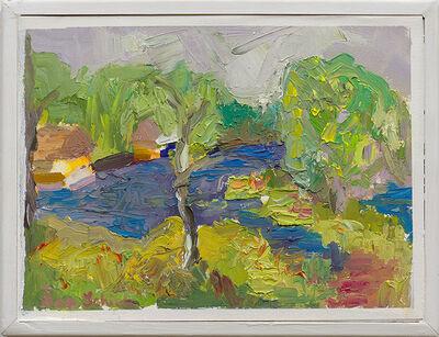 Asa Schick, 'Grassy Waters - Bright', 2019