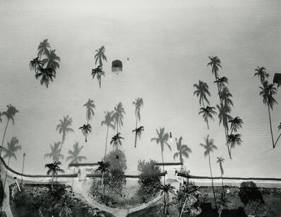 Marilyn Bridges, 'Palm Trees, Miami, Florida', 1987