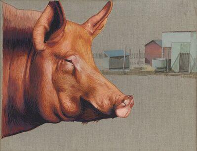 Mary Snowden, 'Hog'