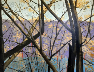 Ellen Sinel, 'Driving Past Trees in Fall'
