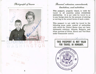 Soheila Sokhanvari, 'American Passport', 2010