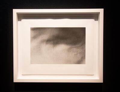 Sean Lee, 'The Garden', 2012-2013