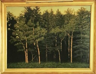John Beerman, 'Trees New Mexico', 1988
