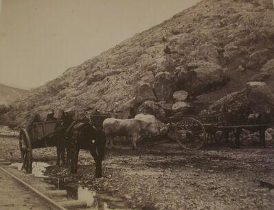 Roger Fenton, 'Cattle Carts, Leaving Balaklava', 1856